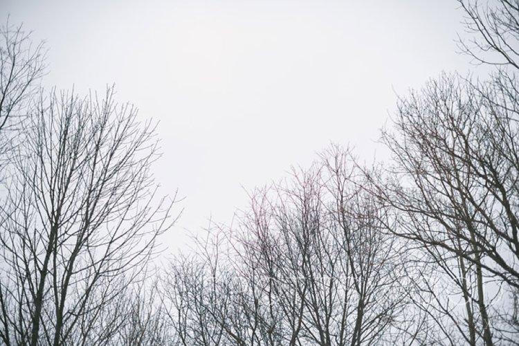 2014-03-18_0006